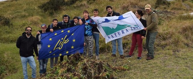 Voluntariado Ambiental na Área de Intervenção do Monte da Guia