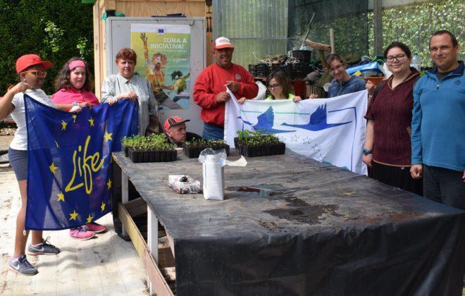 Primeira Atividade com Organização do Terceiro Sector no Jardim Botânico do Faial/ First Activity with 3rd Sector Organization at Faial Botanic Garden